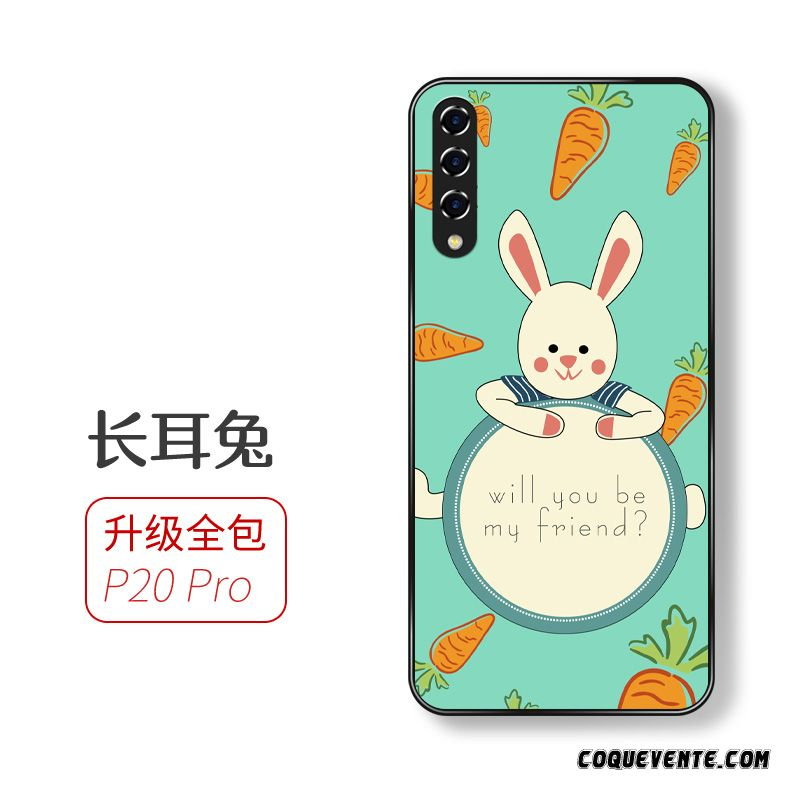 Coque Huawei P20 Pro Pas Cher, Housse Coque Pour Neige, Housse Protection Huawei P20 Pro